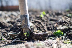 zelf tuin aanleg
